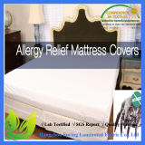 Hypoallergenic Zipper Mattress Cover