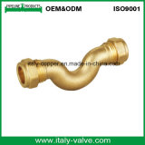 Customized Quality Brass Compression U Bend/ Pipe Fitting (AV7019)