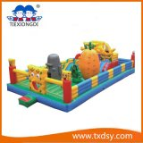 High Quality Classical Inflatable Jumper and Slide Combo Castle