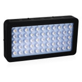 Full Spectrum Reflector COB LED Grow Lights for Hydroponic