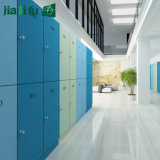 Jialifu Factory Directly Sales Storage Locker