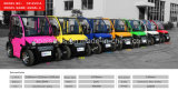 Double Seat Mini Motorized Cars, New Energy Neighborhood Electric Car
