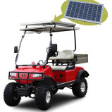 Solar Panel 2seater Hunting Buggy / Golf Buggy