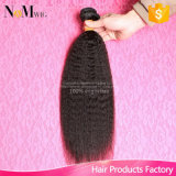Wholesale Price Chinese Wholesaler Yaki Kinky Straight Virgin Malaysian Hair Bundles Weave