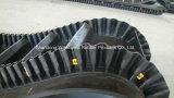 Sidewall Conveyor Belt Exported to Russia