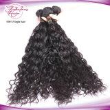 Wholesale Human Real Mink Natural Wave Virgin Brazilian Hair Extension
