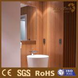 Bathroom Wall Decoration Panel WPC Wall Panel (MW-05)