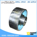 Wgz Hot Sale Drum Type Coupling with Brake Wheel