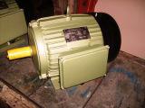 YC Single Phase Electric Motor