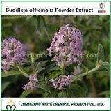 Natural Buddleja Officinalis Powder Extract Acacetin 2% HPLC