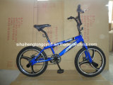 "Blue Color 20"" Bicycle with Front and Rear Disc Brake (SH-FS018)"