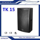 Great Color (TK15 TACT) 15 Inch PRO Audio Floor Monitor Speaker
