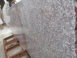 Cheaper Chinese Granite Misty Brown G664