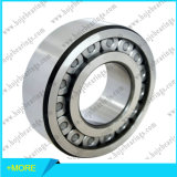 SKF Tapered Roller Bearing / Cylindrical Roller Bearing / Needle Roller Bearing / Spherical Roller Bearing / Thrust Roller Bearing / Track Roller Bearing