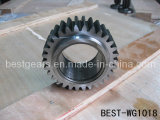 Spur Steel Gear (BEST-WG1018)
