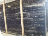 Black White Marble Slab for Walling / Flooring/Countertop (YY -MS002)