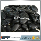 Black High Quality Pebble Stone for Flooring