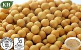 Lower Cholesterol Soybean Extract Isoflavones, Beta Sistosterol 40%~80% HPLC