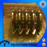 HSS Dp18 Gear Hobbing Cutter with PA20