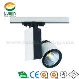 High Brightness LED Track Lamp (LM-T0420)