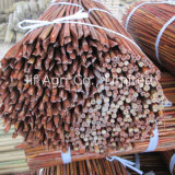 Nature Bamboo Cane with Dyed Color