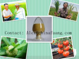 Agrochemicals Agricultural Chemicals Fungicide 95%Tc, 25%Sc, 50% Wdg (Amistar) Azoxystrobin
