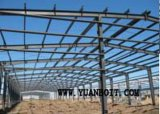 Huge Steel Frame Structure Warehouse with Good Design