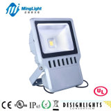 UL Listed LED Flood Light with 3years Warranty (ML-FL07-100W)