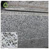 China Popular Bala White Granite Tile for Floor/Wall Cladding