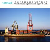 Sea Freight Shipping Agent Logistics Plastic Export to Malaysia From China