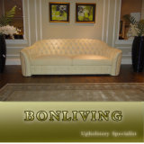 New Arrival Post-Mordern Leather Sofa Furniture (B24)