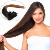 Best Quality Double Drawn 100% Human Remy Clip in Hair Extension