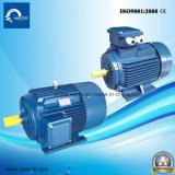 Y3 Series Cast Iron Three-Phase Asynchronous Induction Electric Motor with CE
