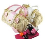 High Fashion Lady Straw Bags with Lace (T833)