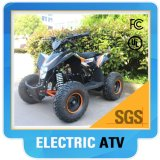 Wholesale Mini Buggy 36V 1000W Mini Kids Cross Bike ATV