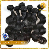 5A Grade-Popular Style Body Wave India Virgin Human Hair Extension