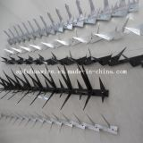 Galvanized Wall Spike for Sale