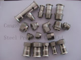 Stainless Steel Pipe Fitting Bsp Nut