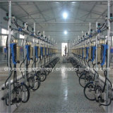 Automatic Milking Machines for Dairy Farm