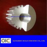 Standard Steel Pinion Spur Gear