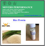 Hot Sale! High Purity Rice Protein Powder