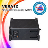 Obtained Ce Certificate Skytone Vera12 Suspended Passive Line Array Speaker