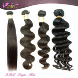 100% Indian Hair Extensions Wholesale Black Hair Products