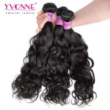 Natural Wave Brazilian Human Hair Extension