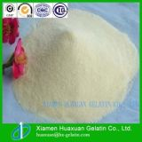 Best Sell Fish Collagen in Made in China