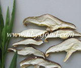 Dried Matsutake Mushroom Slice for Sale