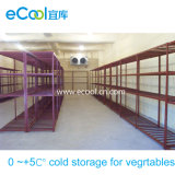 0~+5c Large and Middle Sized Cold Room for Storage of Vegetables and Fruits