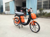 350W Fashion Brushless Electric Bike