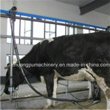 Pipeline Milking Machine for Sale