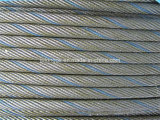 Steel Wire Rope /Wire Rope /Black Steel Wire Rope